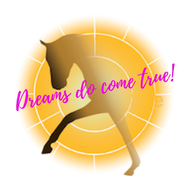 Bij de Equirise Academy leer je dat je al jouw dromen uit kunt laten komen, wat is jouw droom?